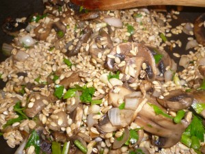 barley mushrooms and onions